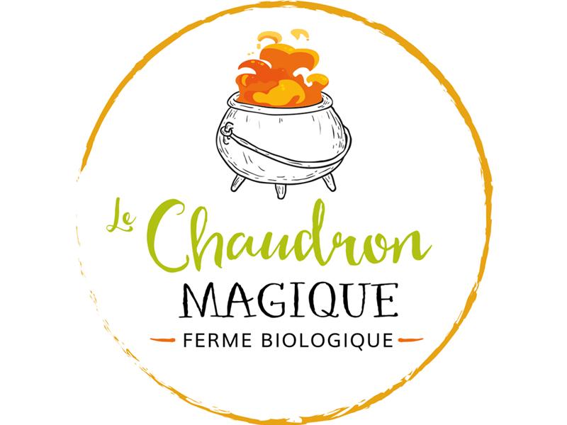 Logo du chaudron magique